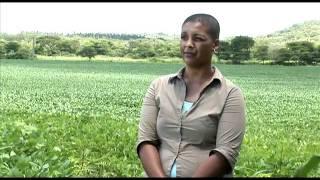 Frances & Dororthy Arnold, Zambia -- Farmer Profile