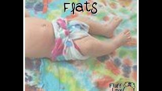 Gambar cover Fluff Love and CD Science -- Flat diapers
