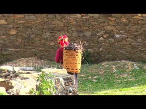 Village Women, Uttarakhand