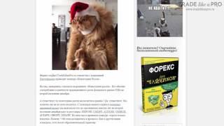 «Форекс конкурс Новогоднее ралли»