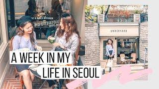 Week in My Life in Seoul | JYP, FNC + Bumping Into Kpop Idols + Hongdae Shopping | Korea Vlog #31