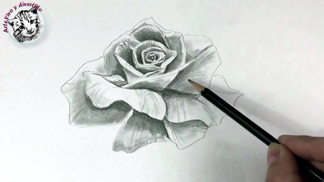 Como Dibujar Una Rosa Realista Con Un Solo Lapiz Youtube