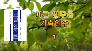 [피클 일주론] 31-1 기축일주 1 - 피클의 행복한 명리