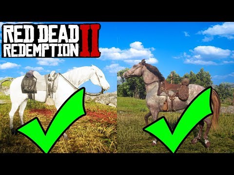 HOW TO GET EVERY BEST HORSE IN RED DEAD REDEMPTION 2 FOR FREE! RDR2 Best Horse Location!