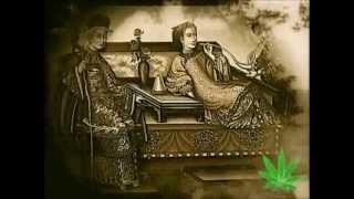 The Magic Weed   a history of marijuana