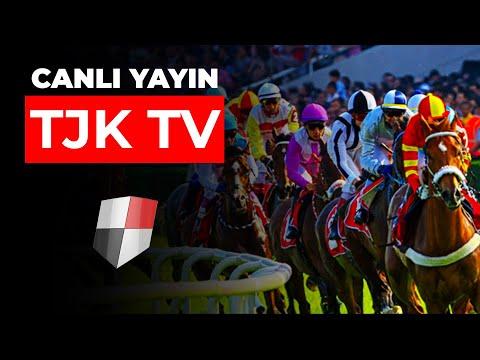 TJK TV | Canlı Yayın HD İzle