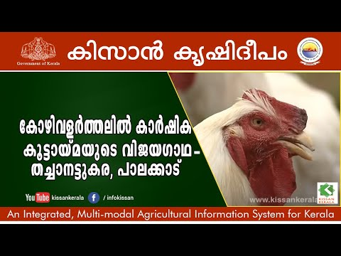 Sucess story of Poultry Rearing - an initiative by Thachanattukara Farmer producer company -623