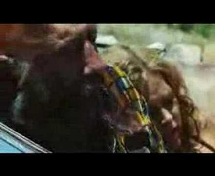 Lynyrd Skynyrd - Free Bird [Devil's rejects ending)