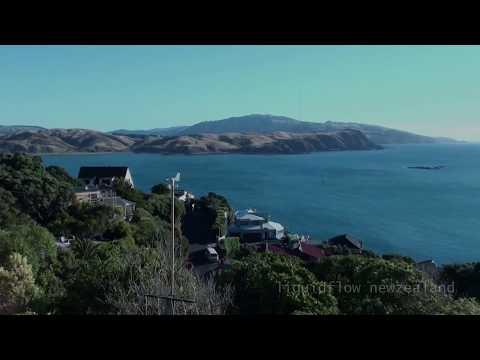 windsurfing - liquidflow newzealand