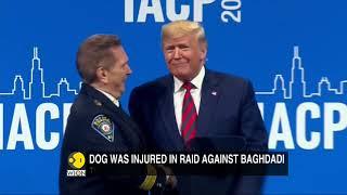 Trump shares image of hero dog injured in Baghdadi raid