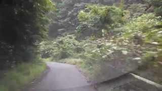 ニホンオオカミの目撃現場を走ってみました。