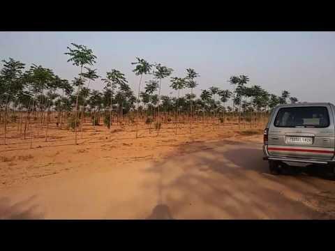 1 ACRE FARM LAND AT Bangalore highway