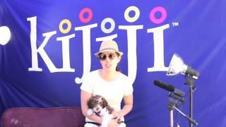 Australian Shepherd Mini Poodle Mix, Fiona - June 9, 2013
