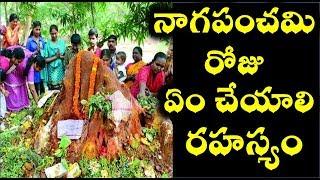 నాగపంచమి రోజు ఏం చేయాలి |   naga chaturthi benefits | nagula chavithi,GUSA GUSALU