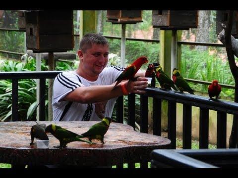 Kuala Lumpur Bird Park 2013