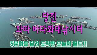 ftv피싱지오그래픽 와따 바다좌대낚시터 방영