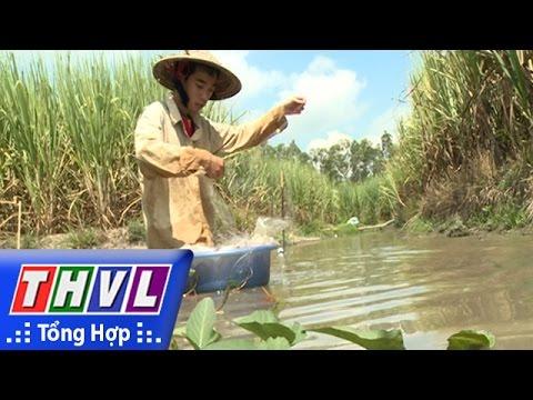 THVL | Thắp Sáng Niềm Tin – Kỳ 351: Em Trần Vũ Linh