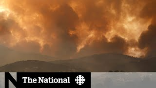 'Code red': Dire warnings from UN climate change report