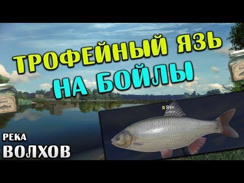 зимняя рыбалка на плотву - 2018-05-23 12:00:30