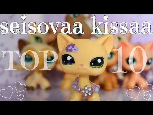 MIUN TOP 10 SEISOVAA KISSAA