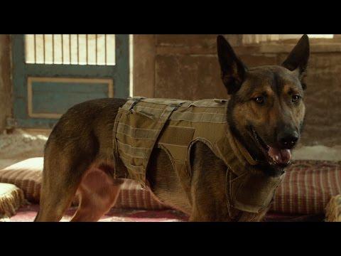 Trailer do filme Max: O Cão Herói