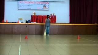 Skc Dog Obedience Trial - Intermediate Class Winner