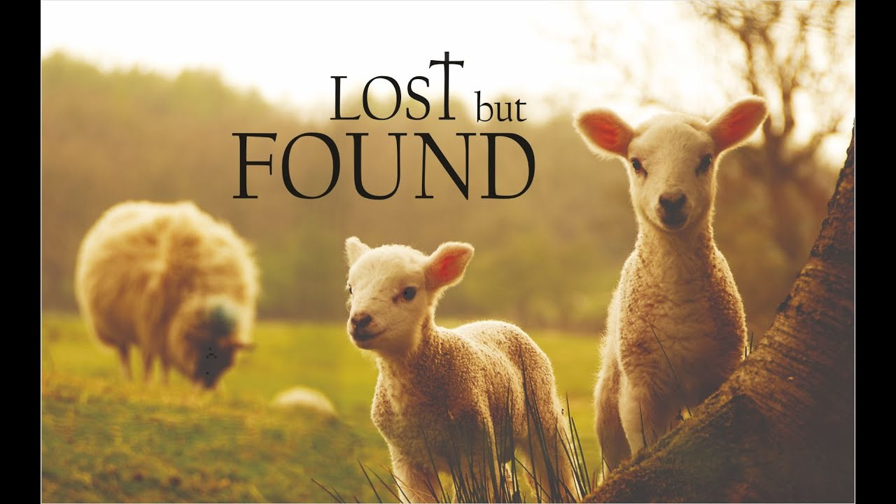 Image result for lost but found photo