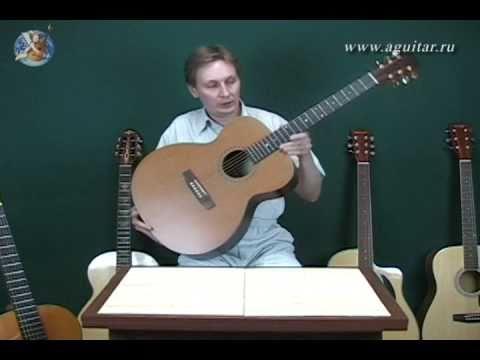 Выбор гитары: виды гитар и свойства 1/2