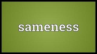 Sameness Meaning