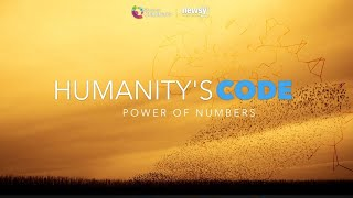 Humanity's Code: Power of Numbers