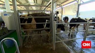 Al Rawabi Dairy on CNN TV