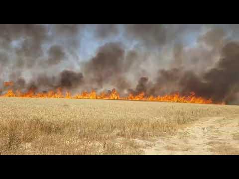 צפו: שריפה בעוטף עזה מבלונים שהפריחו ערבים ביום הנכבה