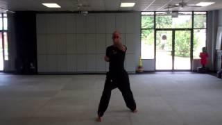 Tiger Rock Martial Arts - Sun Form (yellow belt form)