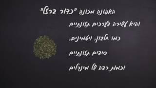 בבושקה הפקות מציגה - חמש עובדות על אפונה של סוגת