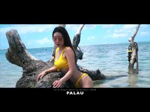 Trip to Palau- Underwater - Yo!Tour 2018