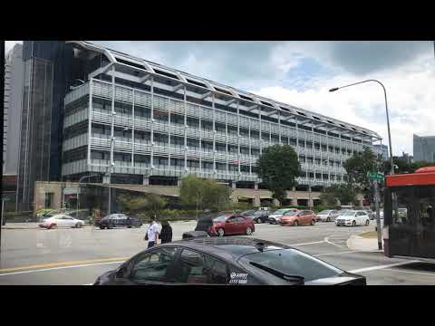 Beshies Singapore Adventure