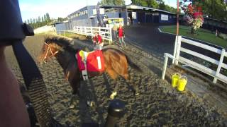 Horse racing accident averted. (contains profanity) thumbnail