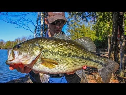 MONSTER BASS Fishing In WISCONSIN! (HUGE!)