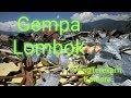 Gempa di Lombok yang Terekam Kamera