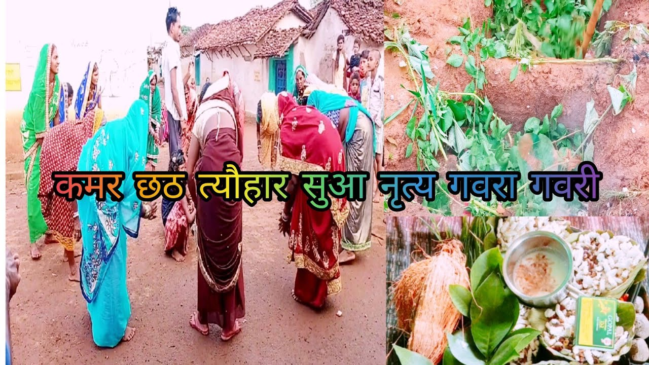 Download suva lahakt He शुवा लहकत हे Alka Chhattisgarh lokpriya Nitya gaura Gauri