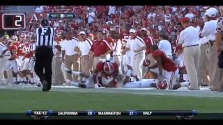 2011 Alabama Crimson Tide vs Arkansas Razorbacks