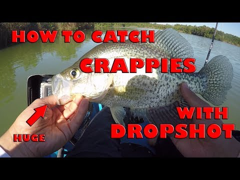 How To Dropshot For Crappies - Double Drop Shot Rig - (Crappie Fishing)