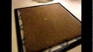 Raw Food Recipes: Sunflower Bread