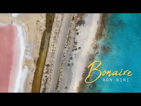Bonaire -- The Coolest Island in the Caribbean