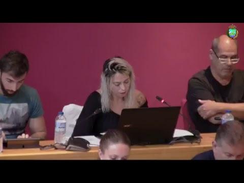 Pleno Ordinario 18_09_2018