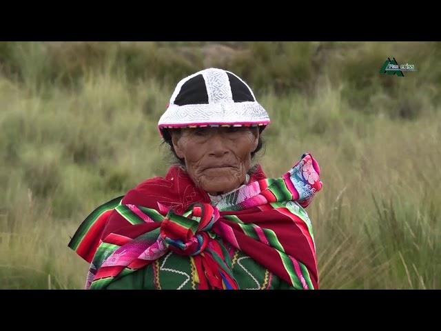 VIDEO INSTITUCIONAL  GOBIERNO REGIONAL Y PER PLAN MERISS OFICIAL 2019
