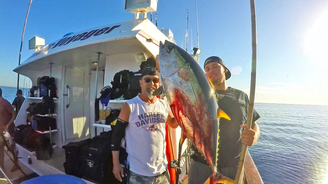 Yellowfin tuna fishing on the pacific voyager san diego for Tuna fishing san diego