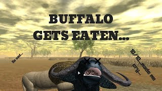Roblox | Wild Savannah Shorts | Female Buffalo hunted by young male Lion