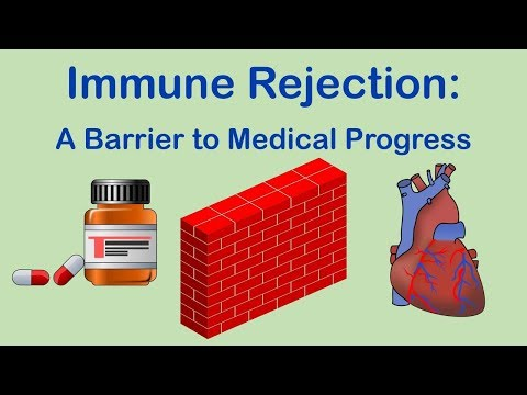 Why immune tolerance is so important…  Allergies, Medications, Autoimmunity, Transplant