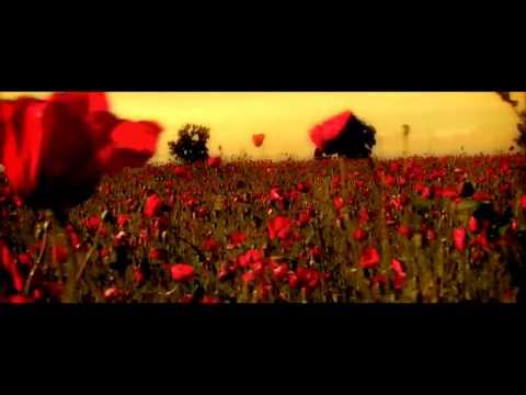 Sisu - Din Toate Florile ( Official Video )
